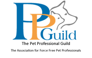 PPG Logo with name and Tag Line